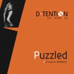 puzzledcover